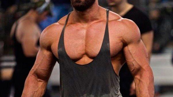 Влияние стероидов на органзим человека